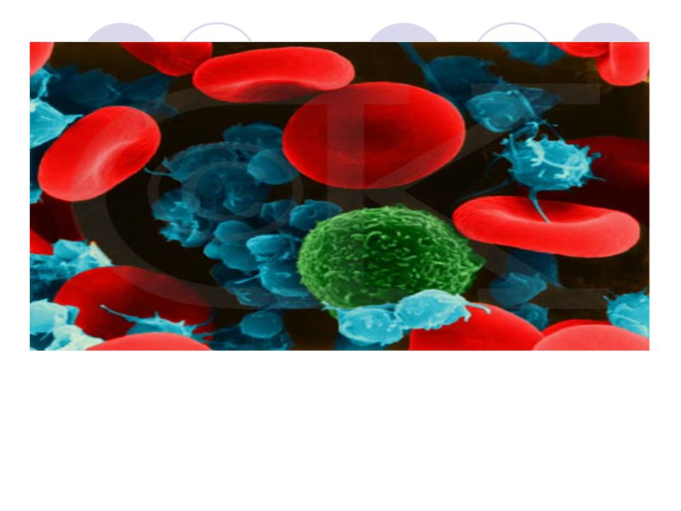 Parts of the Blood Platelets – Allow the blood to clot by all rushing to the injury.