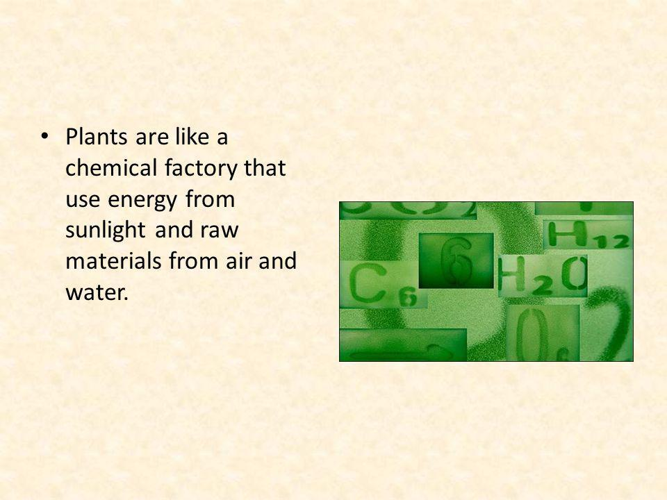 Plants are like a chemical factory that use energy from sunlight and raw materials from air and water.