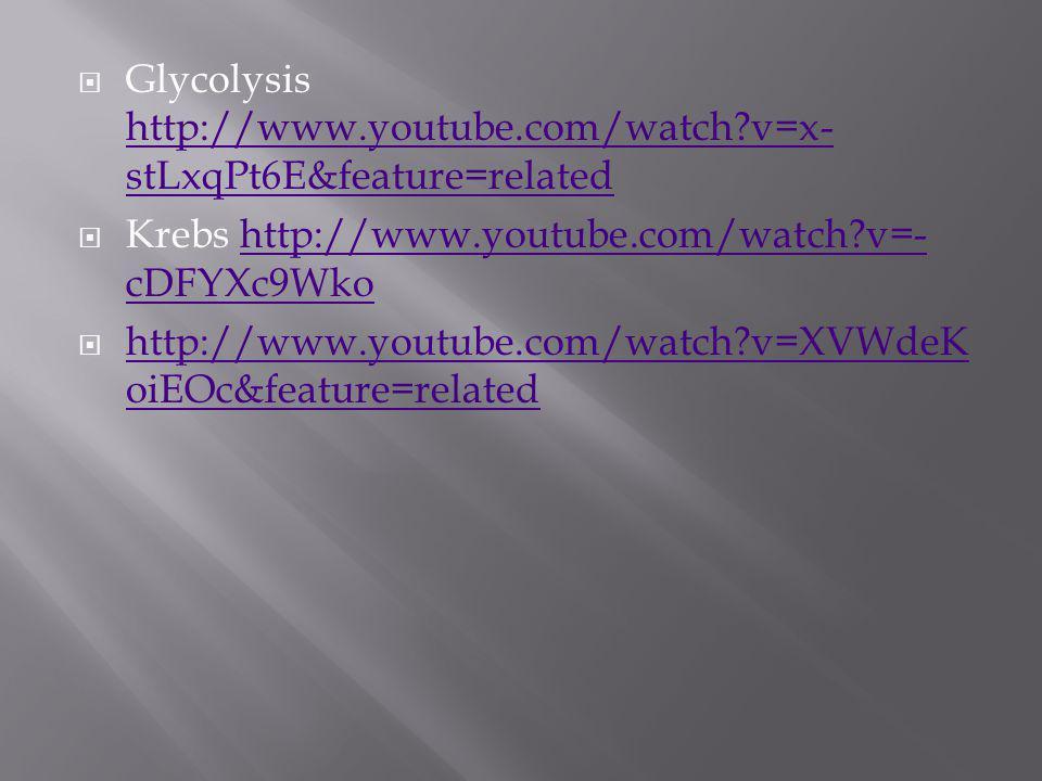 Glycolysis http://www.youtube.com/watch?v=x- stLxqPt6E&feature=related http://www.youtube.com/watch?v=x- stLxqPt6E&feature=related Krebs http://www.yo