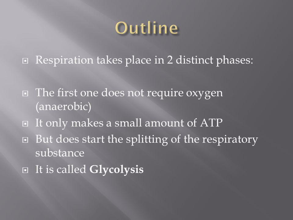 Respiration takes place in 2 distinct phases: The first one does not require oxygen (anaerobic) It only makes a small amount of ATP But does start the