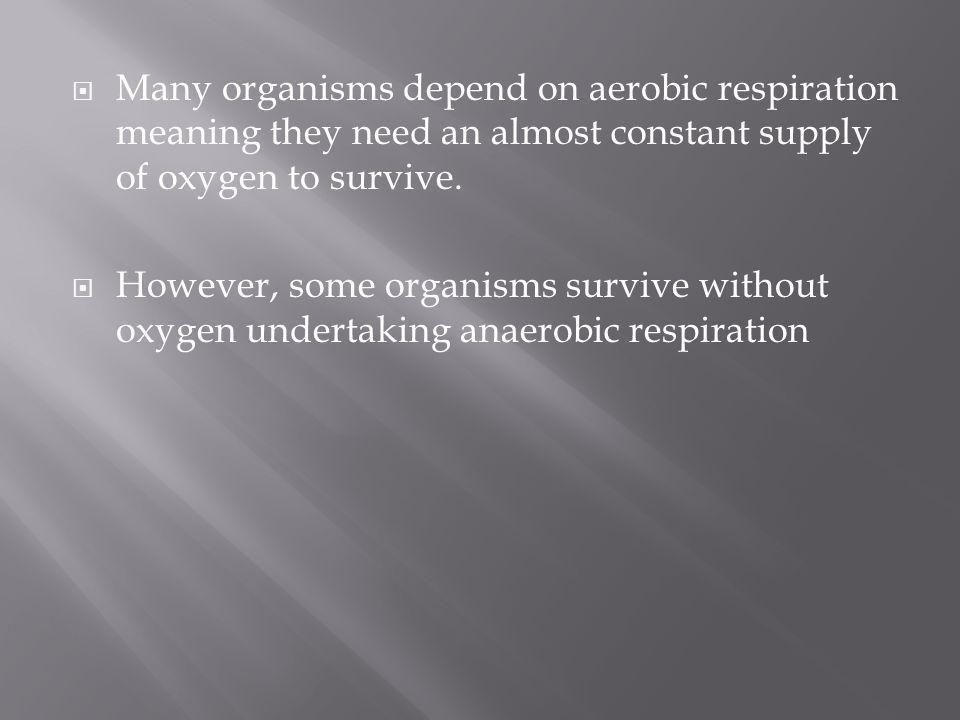 Many organisms depend on aerobic respiration meaning they need an almost constant supply of oxygen to survive. However, some organisms survive without