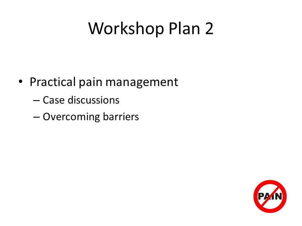 Workshop Plan 2 Practical pain management – Case discussions – Overcoming barriers
