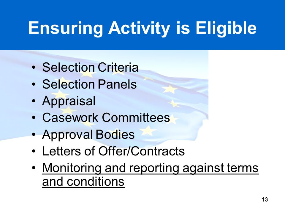 13 Ensuring Activity is Eligible Selection Criteria Selection Panels Appraisal Casework Committees Approval Bodies Letters of Offer/Contracts Monitori