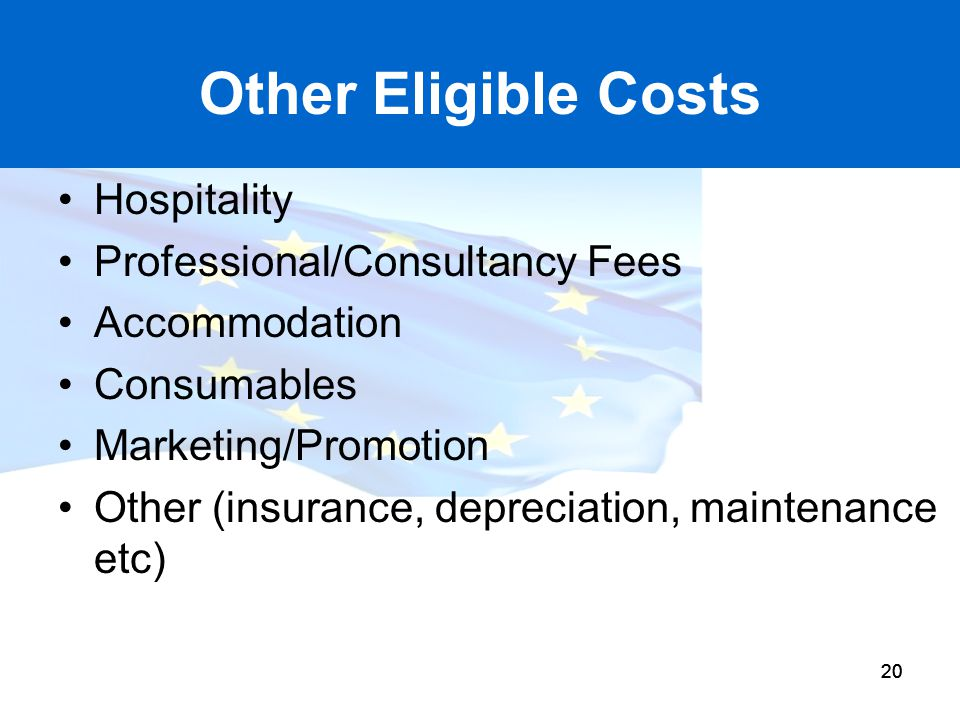 20 Other Eligible Costs Hospitality Professional/Consultancy Fees Accommodation Consumables Marketing/Promotion Other (insurance, depreciation, mainte