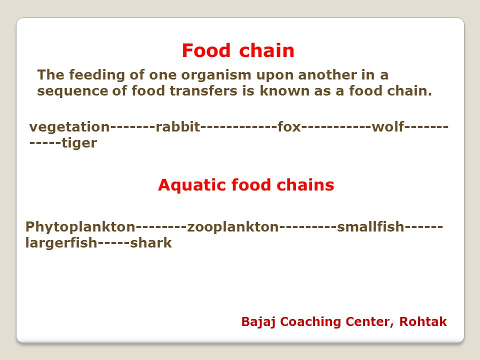 Food chain The feeding of one organism upon another in a sequence of food transfers is known as a food chain. vegetation-------rabbit------------fox--