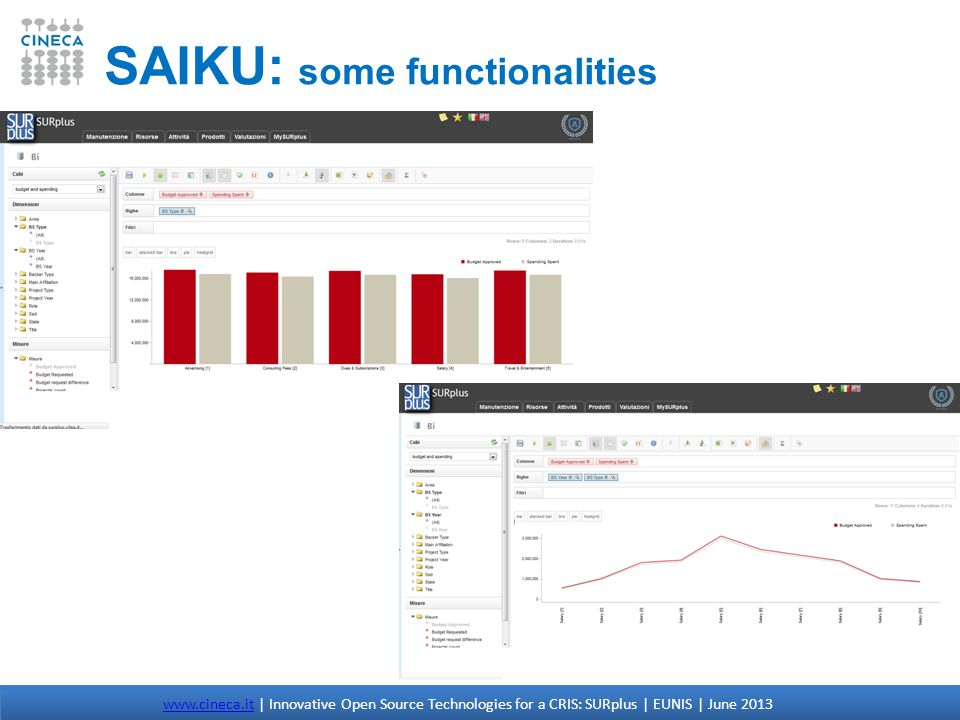 SAIKU: some functionalities www.cineca.itwww.cineca.it | Innovative Open Source Technologies for a CRIS: SURplus | EUNIS | June 2013