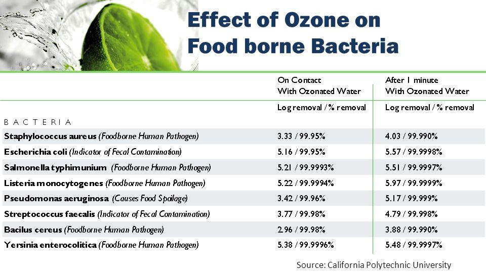 Effect of Ozone on Food borne Bacteria Source: California Polytechnic University