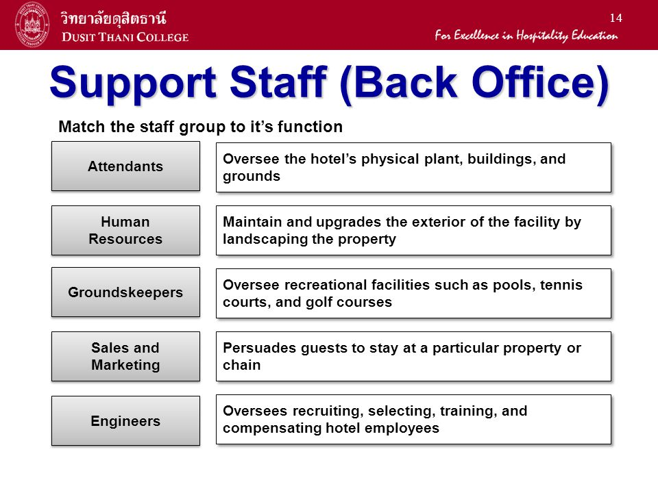14 Support Staff (Back Office) Engineers Groundskeepers Attendants Sales and Marketing Human Resources Oversee the hotels physical plant, buildings, a