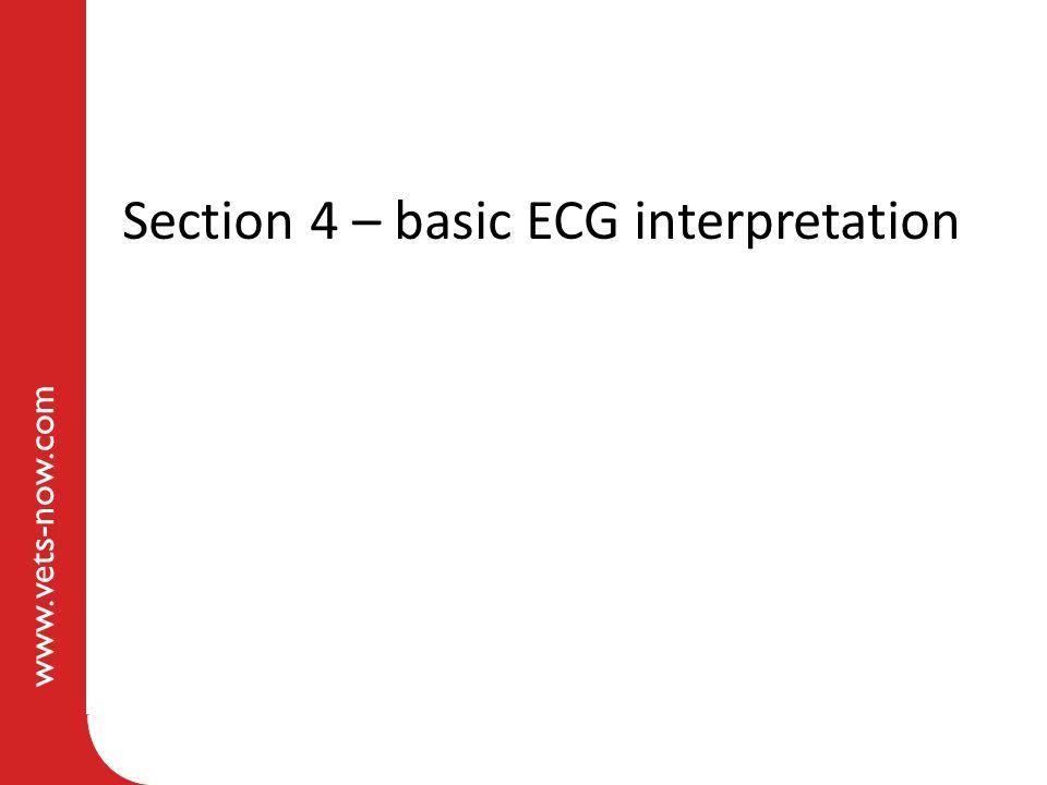 www.vets-now.com Section 4 – basic ECG interpretation