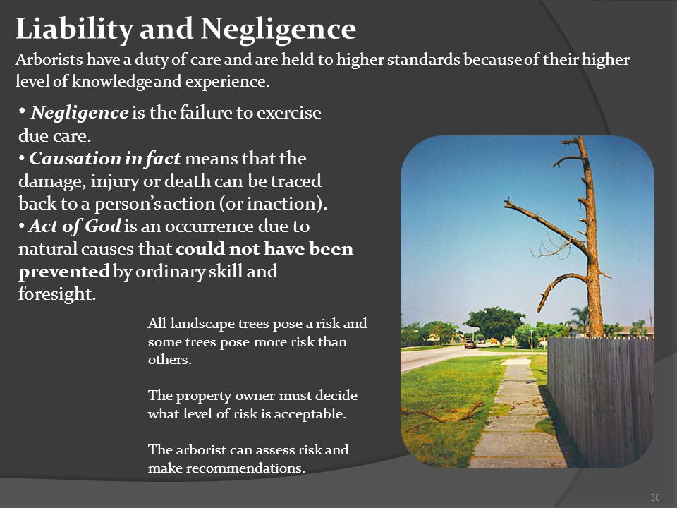 Liability and Negligence Arborists have a duty of care and are held to higher standards because of their higher level of knowledge and experience.