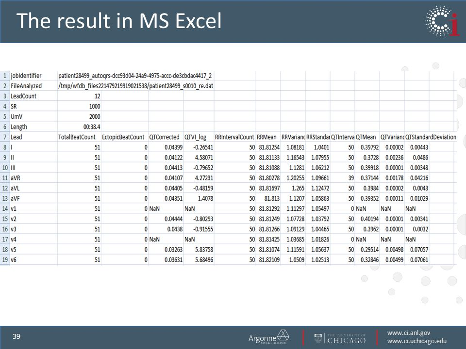 www.ci.anl.gov www.ci.uchicago.edu 39 The result in MS Excel