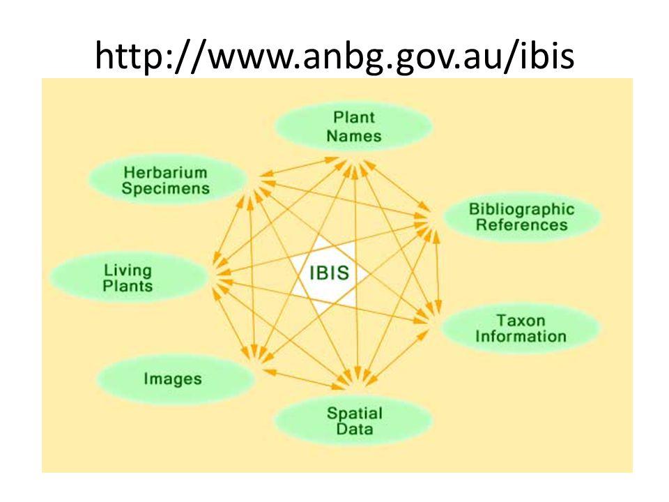 http://www.anbg.gov.au/ibis