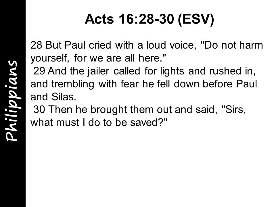28 But Paul cried with a loud voice, Do not harm yourself, for we are all here. 29 And the jailer called for lights and rushed in, and trembling with fear he fell down before Paul and Silas.