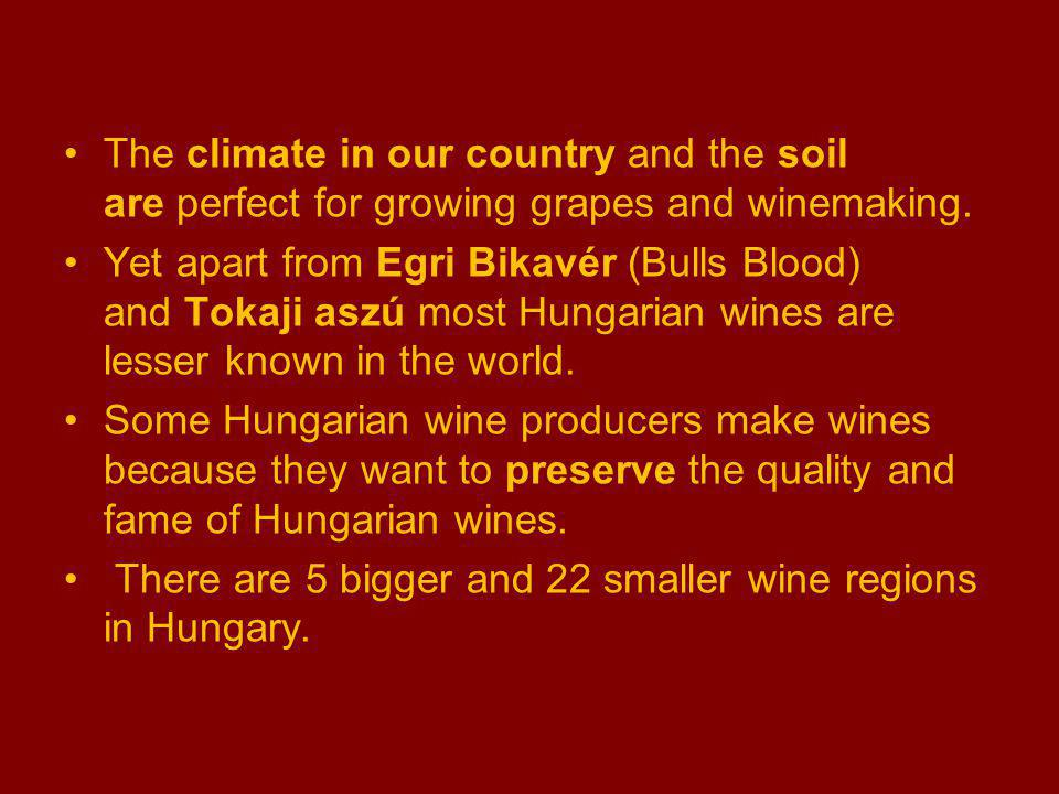 The climate in our country and the soil are perfect for growing grapes and winemaking.