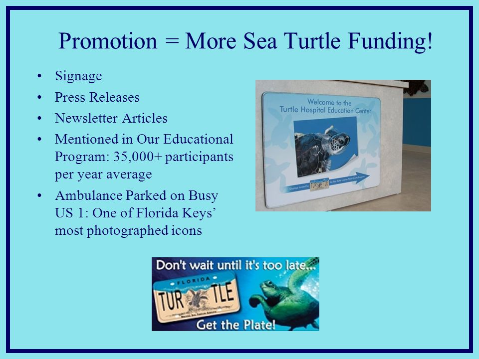 Promotion = More Sea Turtle Funding.