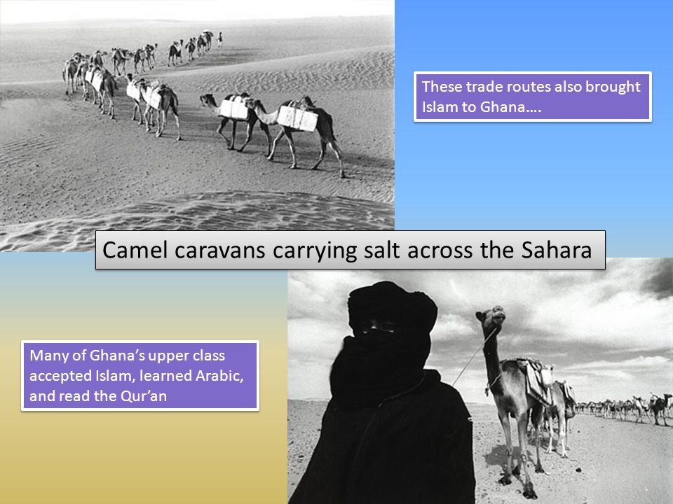 Camel caravans carrying salt across the Sahara These trade routes also brought Islam to Ghana…. Many of Ghanas upper class accepted Islam, learned Ara