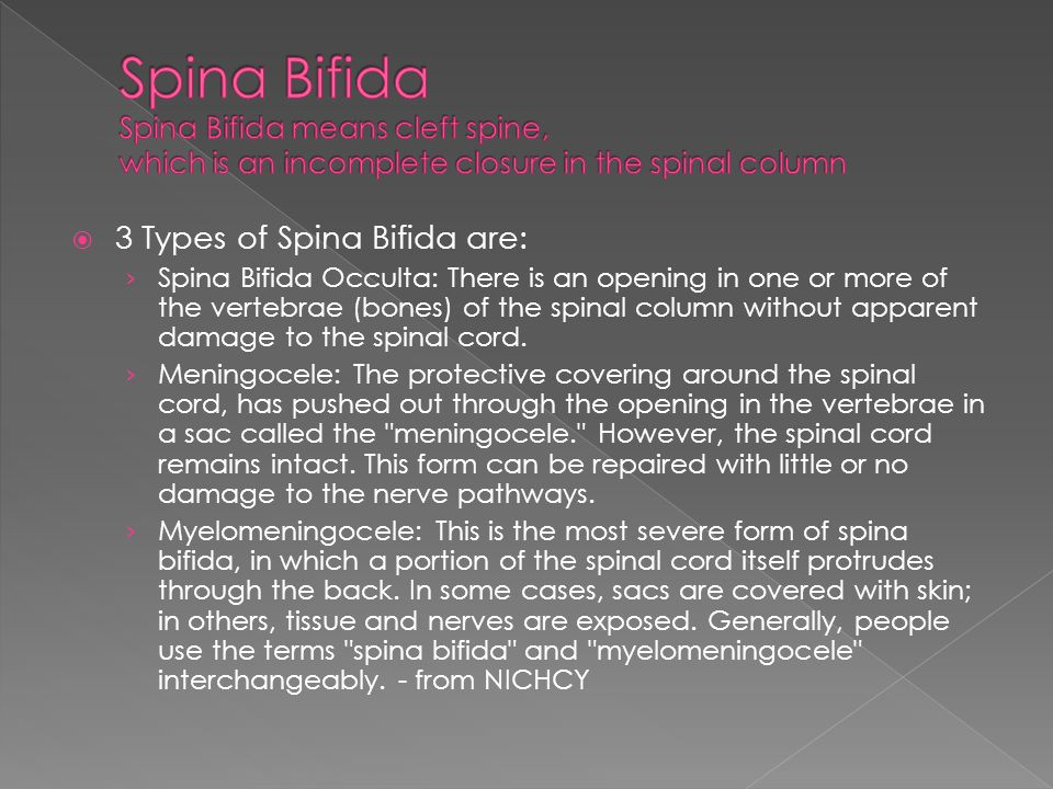 3 Types of Spina Bifida are: Spina Bifida Occulta: There is an opening in one or more of the vertebrae (bones) of the spinal column without apparent damage to the spinal cord.