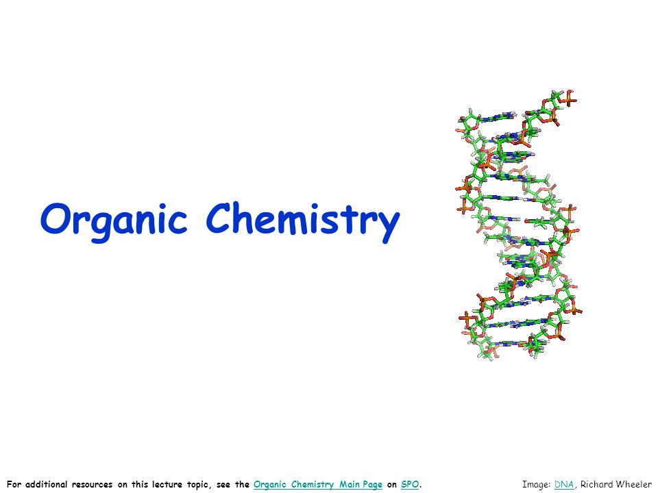 Organic Chemistry Image: DNA, Richard WheelerDNA For additional resources on this lecture topic, see the Organic Chemistry Main Page on SPO.Organic Chemistry Main PageSPO