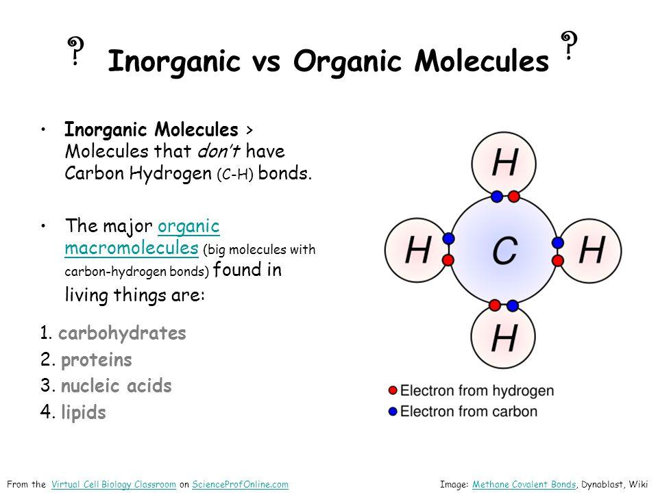Inorganic vs Organic Molecules Inorganic Molecules > Molecules that dont have Carbon Hydrogen (C-H) bonds.