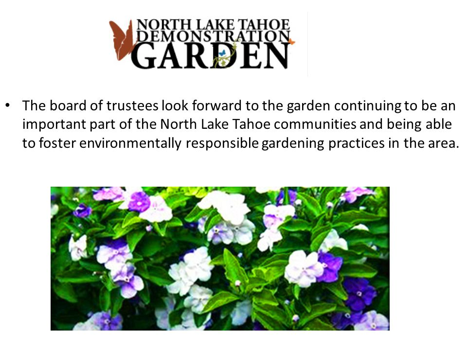 The board of trustees look forward to the garden continuing to be an important part of the North Lake Tahoe communities and being able to foster environmentally responsible gardening practices in the area.