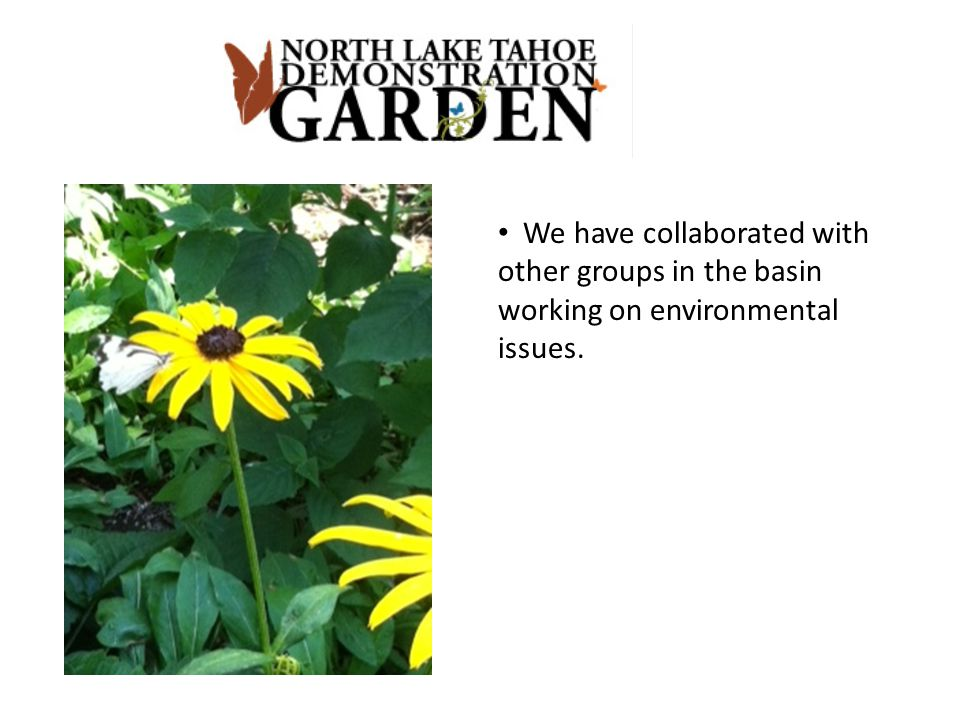 We have collaborated with other groups in the basin working on environmental issues.