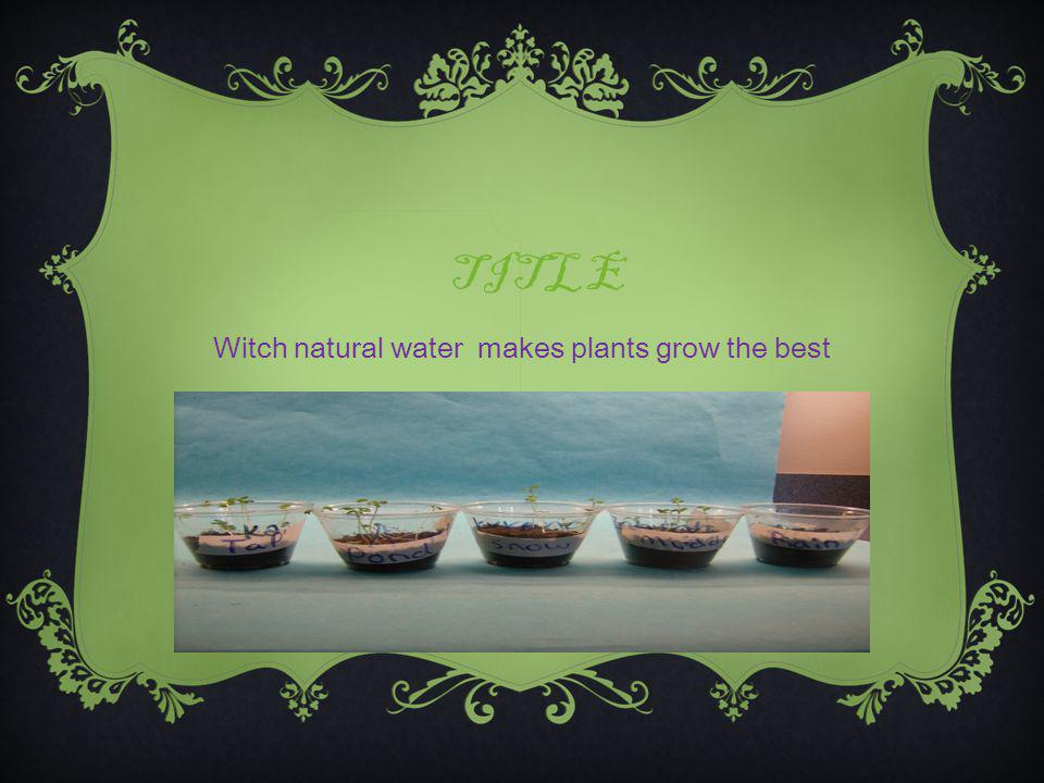 TITLE Witch natural water makes plants grow the best