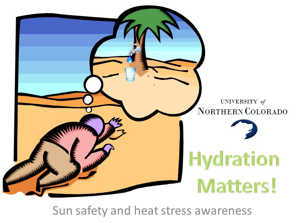 Sun safety and heat stress awareness UNIVERSITY of N ORTHERN C OLORADO