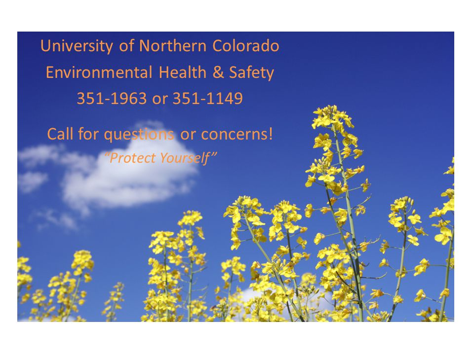 University of Northern Colorado Environmental Health & Safety 351-1963 or 351-1149 Call for questions or concerns! Protect Yourself