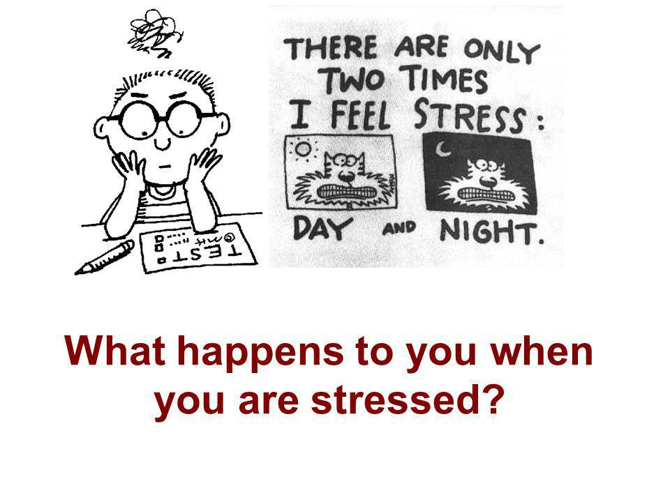 What happens to you when you are stressed?