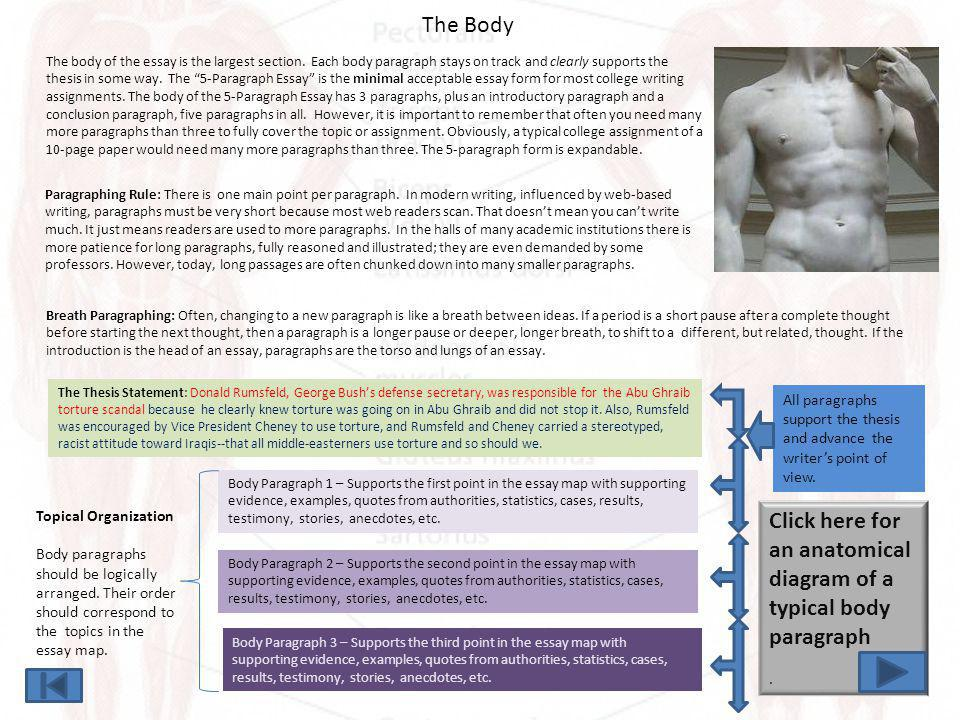The Body Paragraph Topic Sentence for Body Paragraph 1 The topic sentence refers back to the thesis in some way.