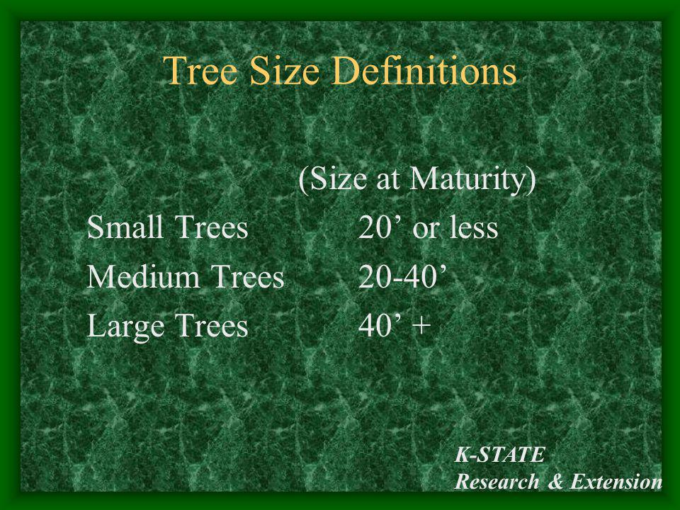 K-STATE Research & Extension Tree Size Definitions (Size at Maturity) Small Trees 20 or less Medium Trees 20-40 Large Trees 40 +