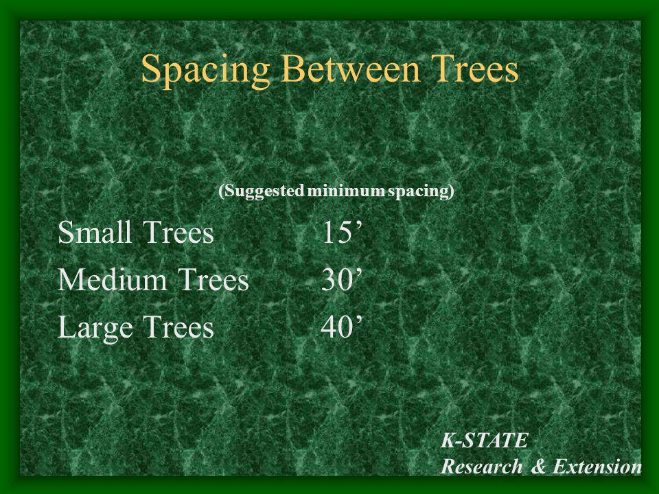 K-STATE Research & Extension Spacing Between Trees (Suggested minimum spacing) Small Trees 15 Medium Trees 30 Large Trees 40