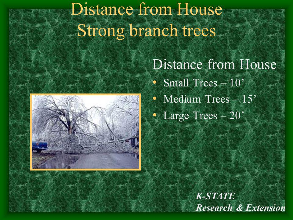 K-STATE Research & Extension Distance from House Strong branch trees Distance from House Small Trees – 10 Medium Trees – 15 Large Trees – 20