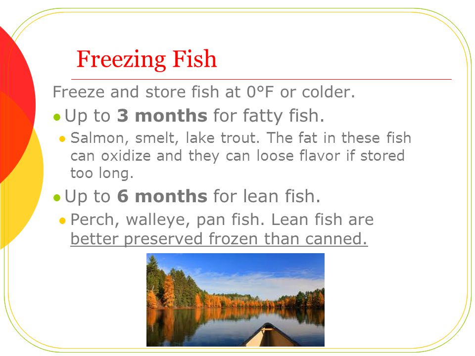 Freezing Fish Freeze and store fish at 0°F or colder.