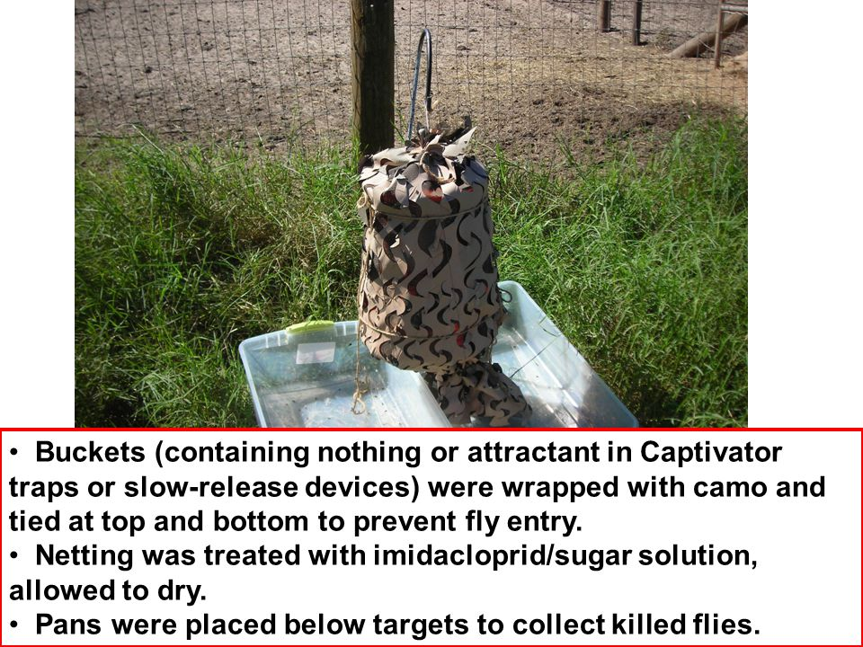 Buckets (containing nothing or attractant in Captivator traps or slow-release devices) were wrapped with camo and tied at top and bottom to prevent fly entry.