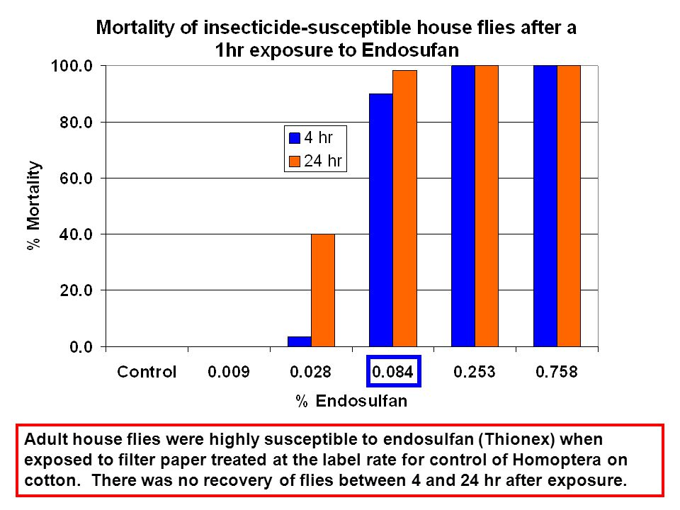 Adult house flies were highly susceptible to endosulfan (Thionex) when exposed to filter paper treated at the label rate for control of Homoptera on c