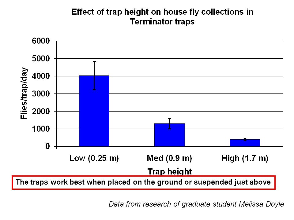 Data from research of graduate student Melissa Doyle The traps work best when placed on the ground or suspended just above
