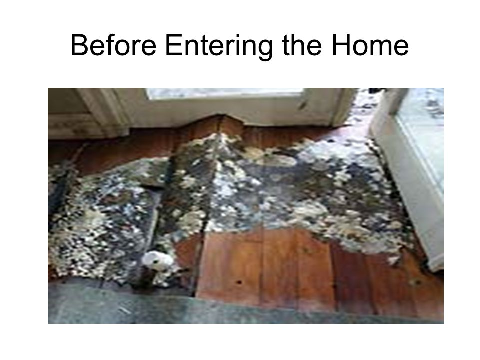 Move Out Throw out most Items that were exposed to flood water Flood waters from ground surface water, rivers and streams is extremely unsanitary often containing sewage, pesticides and other toxic compounds