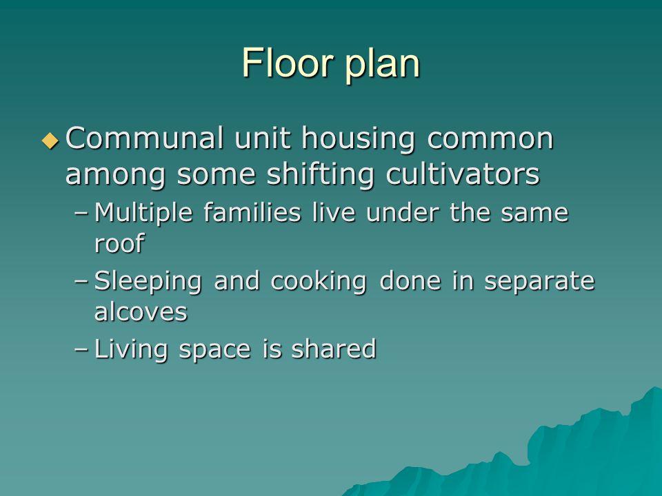 Floor plan Communal unit housing common among some shifting cultivators Communal unit housing common among some shifting cultivators –Multiple familie