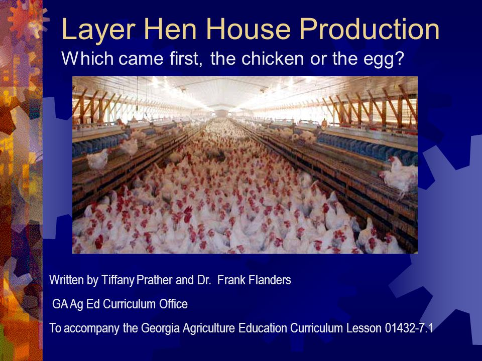 Layer Hen House Production Which came first, the chicken or the egg? Written by Tiffany Prather and Dr. Frank Flanders GA Ag Ed Curriculum Office To a