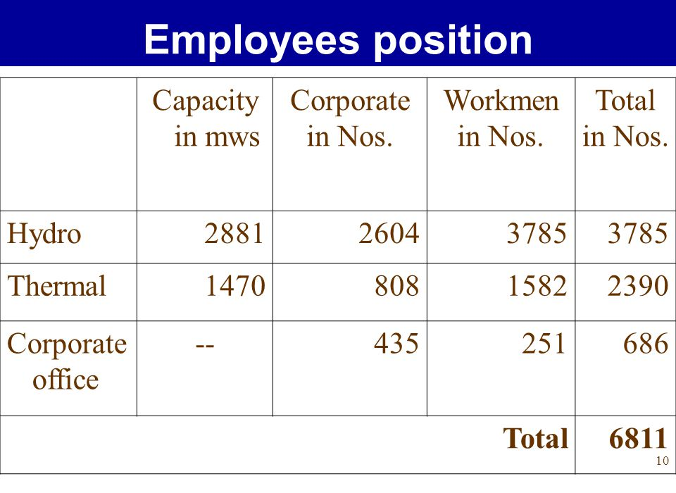 10 Employees position Capacity in mws Corporate in Nos.