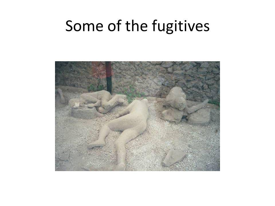 Some of the fugitives