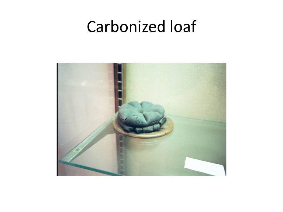 Carbonized loaf