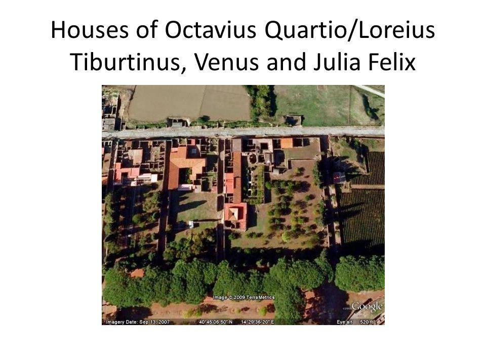 Houses of Octavius Quartio/Loreius Tiburtinus, Venus and Julia Felix