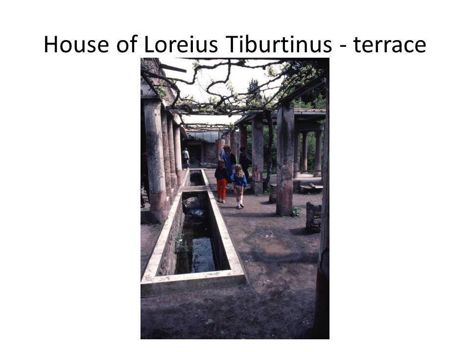 House of Loreius Tiburtinus - terrace