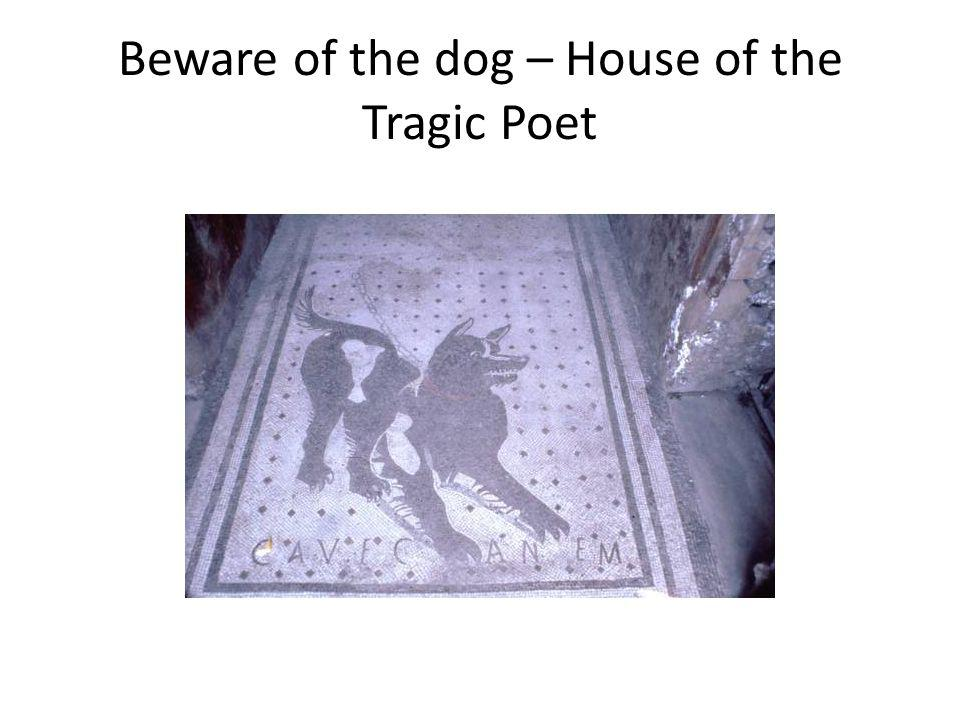 Beware of the dog – House of the Tragic Poet
