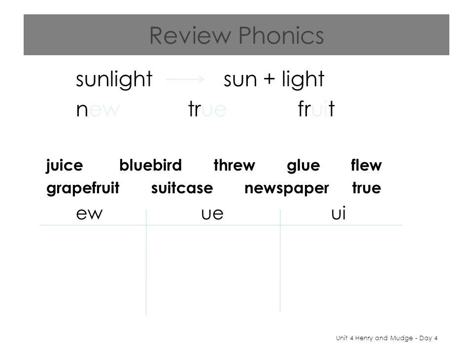 Review Phonics sunlight sun + light new true fruit juice bluebird threw glue flew grapefruit suitcase newspaper true ew ue ui Unit 4 Henry and Mudge - Day 4