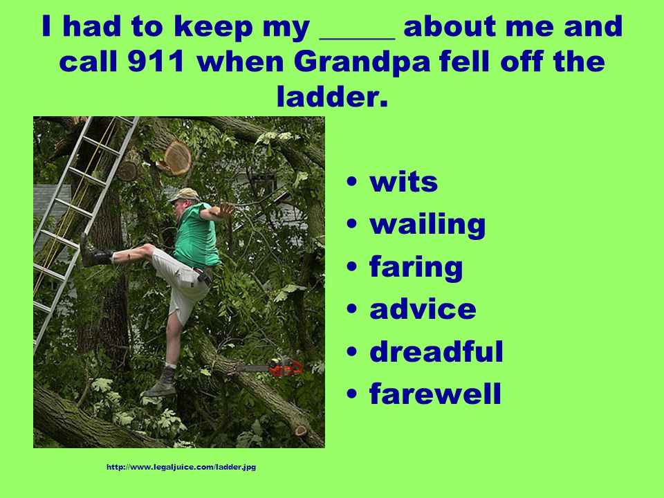 I had to keep my _____ about me and call 911 when Grandpa fell off the ladder. wits wailing faring advice dreadful farewell http://www.legaljuice.com/