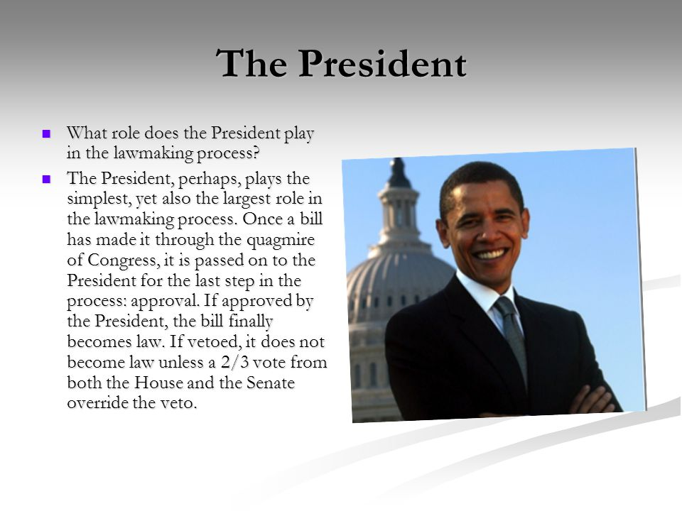 The President What role does the President play in the lawmaking process.