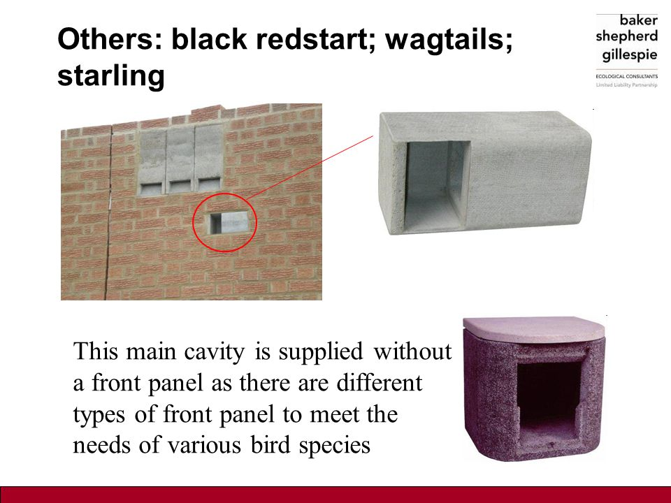 Others: black redstart; wagtails; starling This main cavity is supplied without a front panel as there are different types of front panel to meet the